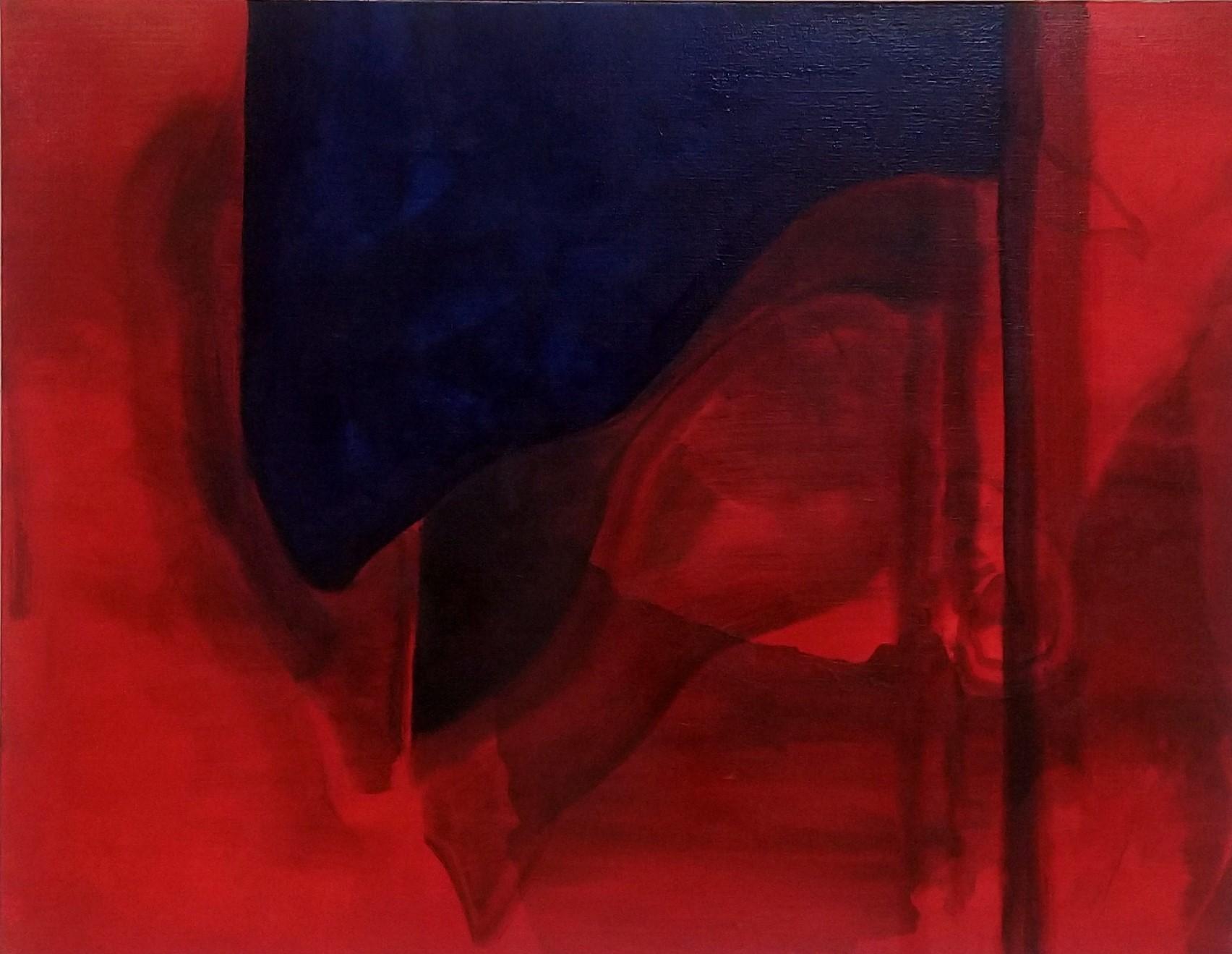 Wouter van de Koot flag red painting shadow blue