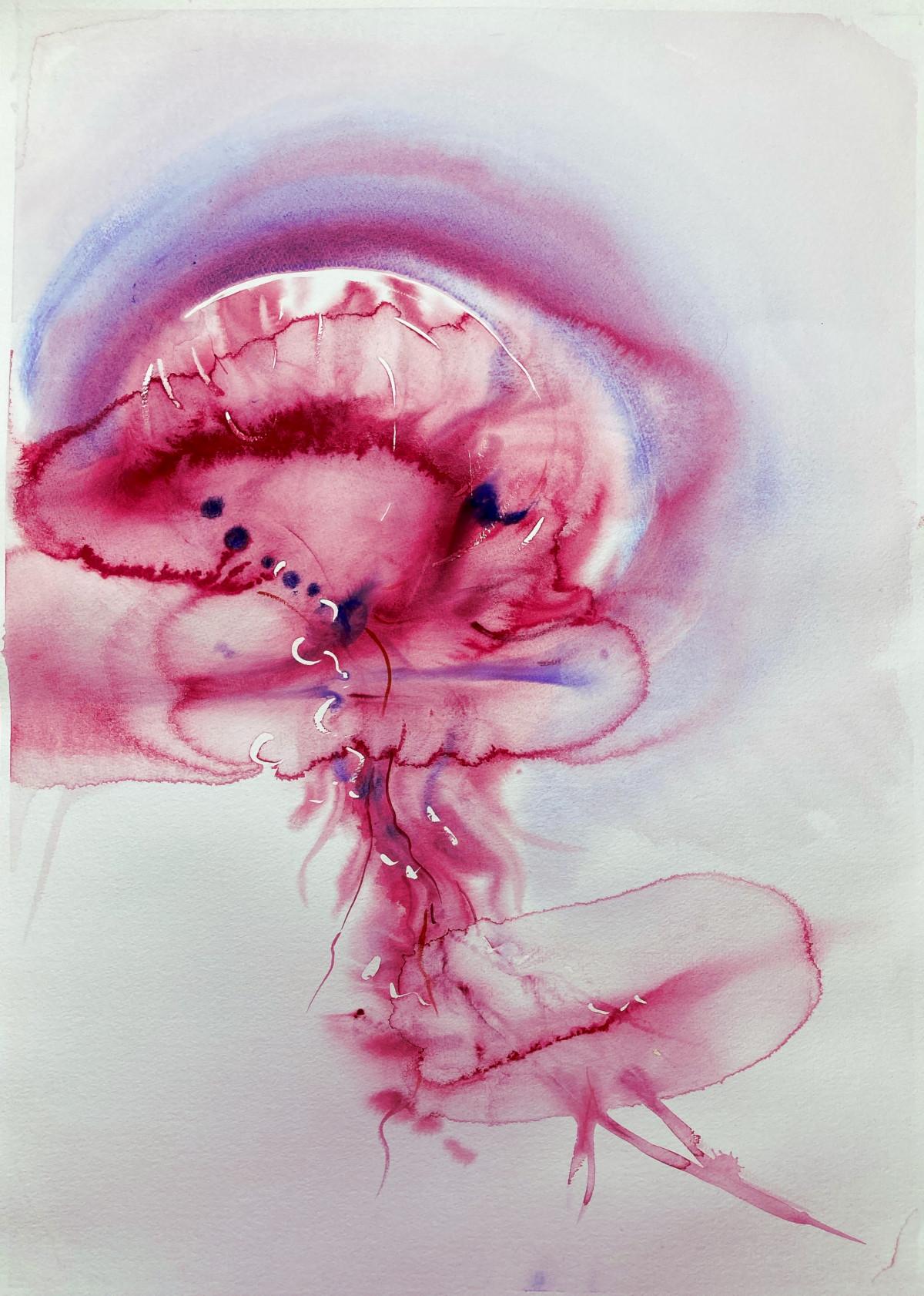 Wouter van de Koot watercolour jellyfish elements water
